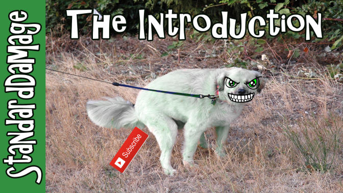 the-introduction